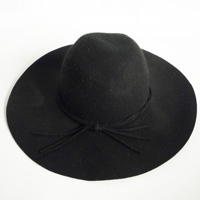 hat with string band